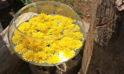 Çiçek terapisi ile beden sağlığına kavuşma
