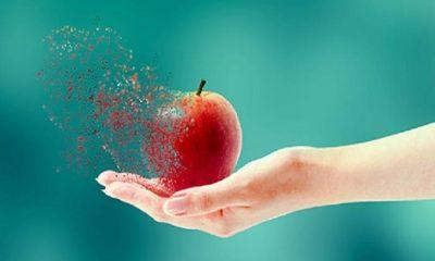 Organik gıda kandırmacası ve soruları – Serdar Kuru