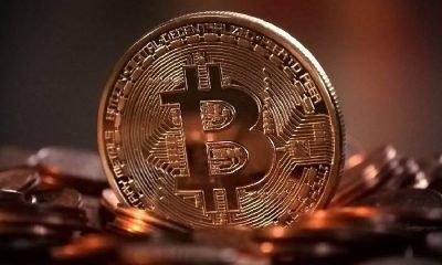 Bitcoin dahil tüm kripto paralar asfalta yapıştı!