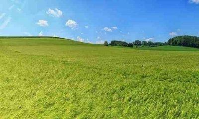 Arazi yatırımı yapmak için 5 neden