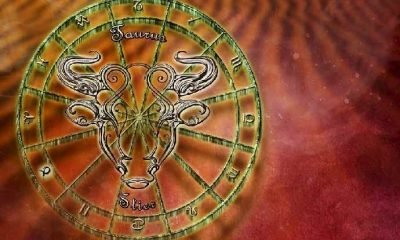 Astroloji: 2019 yükselen BOĞA burcu!