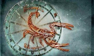Astroloji: 2019 yükselen AKREP burcu!