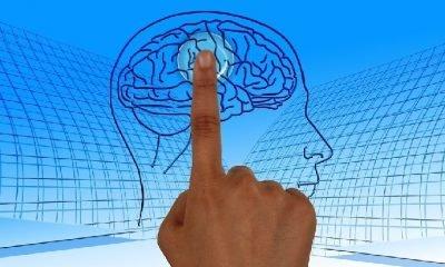 Mindfulness zihni verimli kullanabilme sanatı!