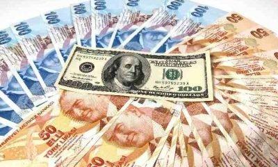 Paranın dili – Hanife Serter