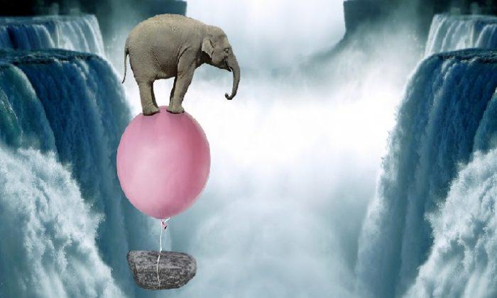 Sen hiç piyasada uçan bir fil gördün mü?