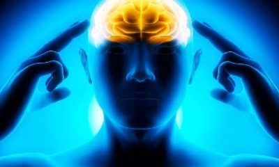 İnsan; beden, zihin ve ruh dengesiyle oluşan 3 boyutlu bir varlıktır!